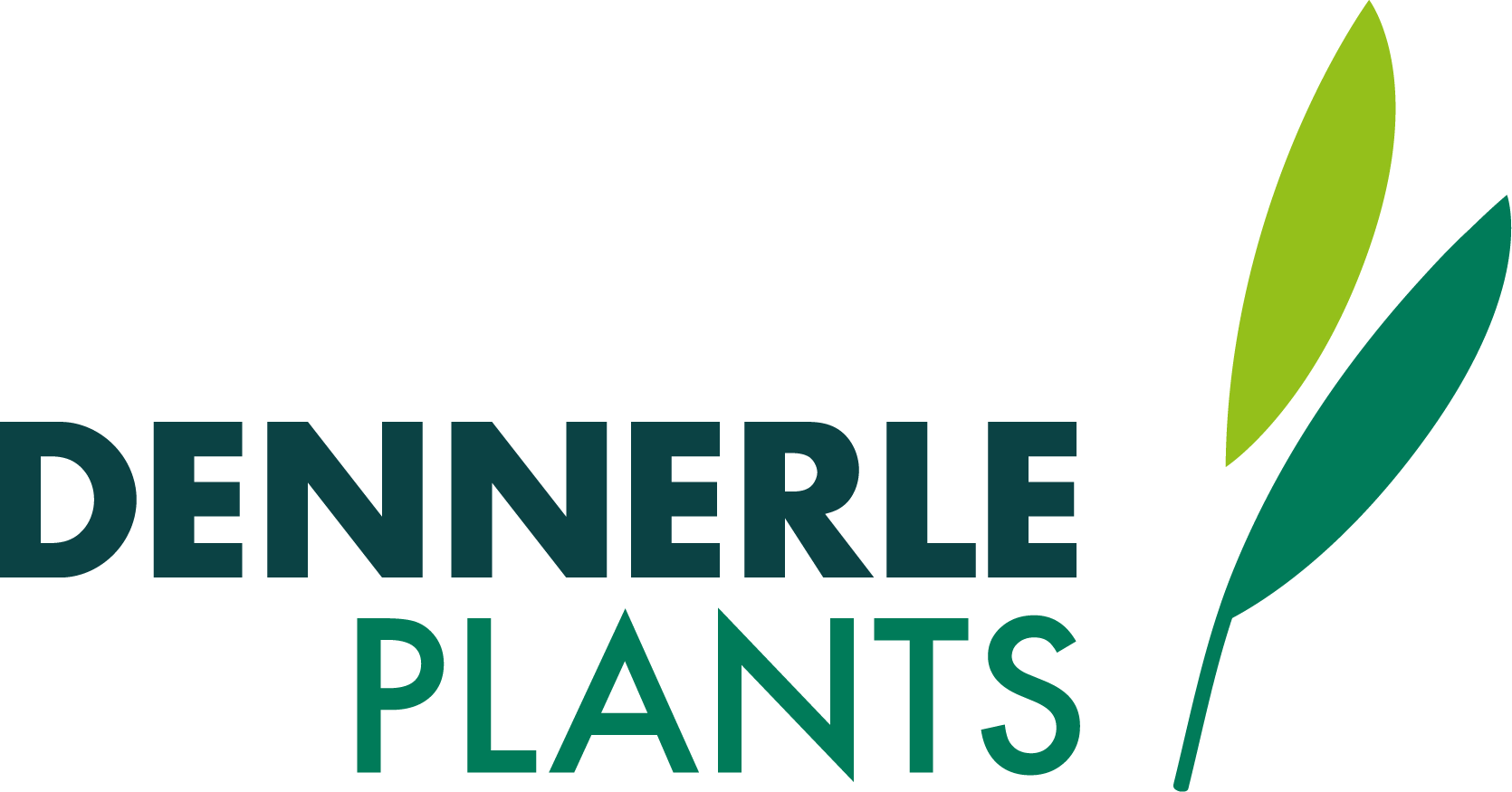 Dennerle logo
